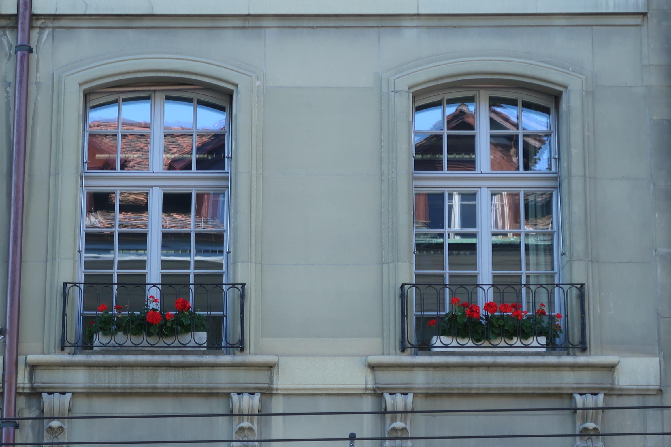 327 8 Fenster G64